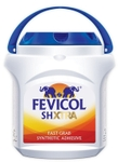Fevicol SH-XTRA Pack Size 50 Kg