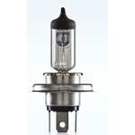 Bosch H4 Lamps 130/100 W For Off-Road Applications Only-F002H50143-8F8