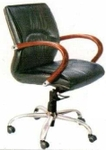 Vishal VC-35 Color Green Director Chair