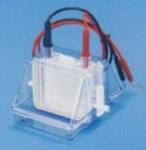 Tarson 7080 Slabs Gel 10x8 Cm For Mini Dual Vertical Electrophoresis Unit