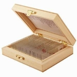 E.S.A.W Set Of 50 Slides Box (Multicolour) (Weight- 500 Gm)
