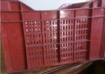 Kissan Crates KFVG0787 Fruits And Veg Crate (Red)