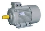 Eagle 3 HP Single Phase 1440 RPM Heavy Electric Motor