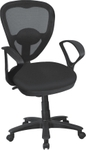 Aaron Low Back Mesh Chair 081