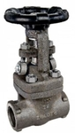 Zoloto 25 Mm Forged Steel Full Bore Gate Valve A 105